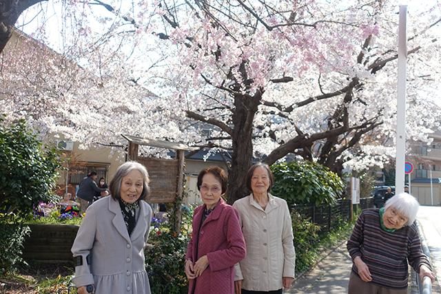 今年もお花見のお出かけ。満開の木の下での記念撮影です。